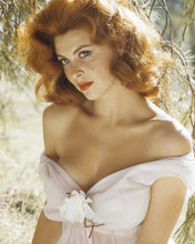 This is an image of Prints & Posters of Tina Louise 202415