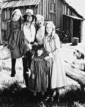 This is an image of 11481 Little House on the Prairie Photograph & Poster