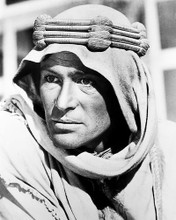 This is an image of 11802 Peter O'Toole Photograph & Poster