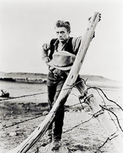 This is an image of 12055 James Dean Photograph & Poster