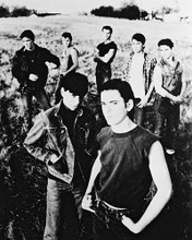 This is an image of 14431 The Outsiders Photograph & Poster