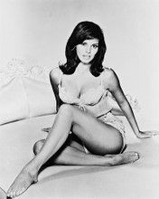 This is an image of 18243 Raquel Welch Photograph & Poster