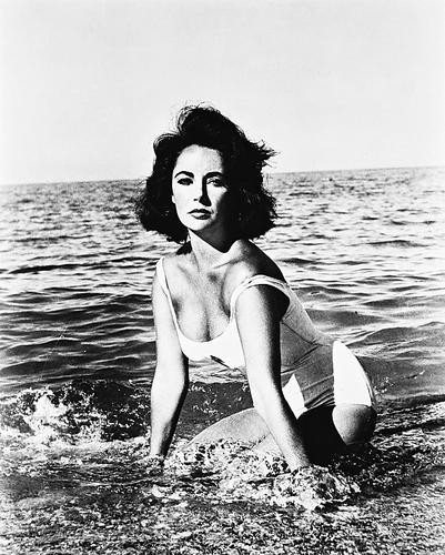 This is an image of 19883 Elizabeth Taylor Photograph & Poster