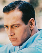 This is an image of 21660 Paul Newman Photograph & Poster