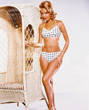 This is an image of 22579 Sandra Dee Photograph & Poster