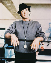 This is an image of 25906 Sylvester Stallone Photograph & Poster