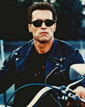 This is an image of 26736 Arnold Schwarzenegger Photograph & Poster