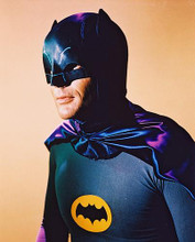 This is an image of 28233 Batman Photograph & Poster