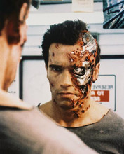 This is an image of 28370 Arnold Schwarzenegger Photograph & Poster