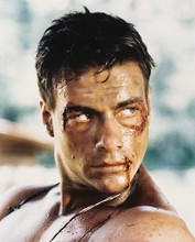 This is an image of 28665 Jean-Claude Van Damme Photograph & Poster
