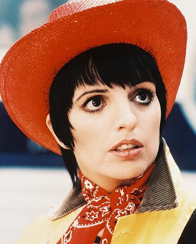 This is an image of 29464 Liza Minnelli Photograph & Poster