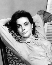This is an image of 100014 Natalie Wood Photograph & Poster