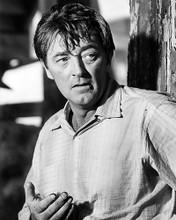 This is an image of Photograph & Poster of Robert Mitchum 100798