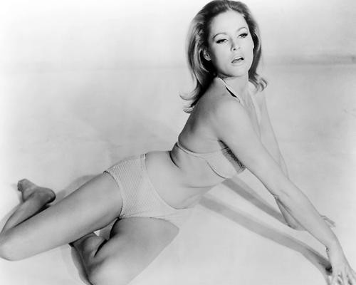 This is an image of Photograph & Poster of Ursula Andress 100921