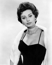 This is an image of Photograph & Poster of Sophia Loren 101041