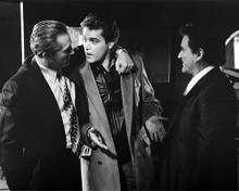 This is an image of Photograph & Poster of Goodfellas 101062
