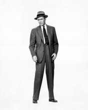 This is an image of Photograph & Poster of James Stewart 101464