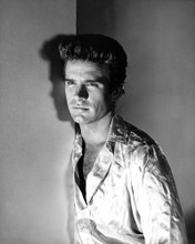This is an image of Photograph & Poster of Warren Beatty 101743