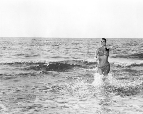 This is an image of Photograph & Poster of Raquel Welch 101768