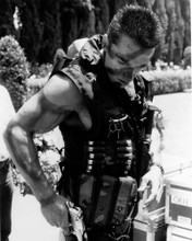 This is an image of Photograph & Poster of Arnold Schwarzenegger 102065