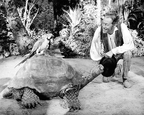 This is an image of Photograph & Poster of Rex Harrison 102113