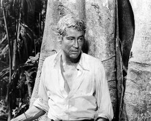 This is an image of Photograph & Poster of Peter Otoole 102127