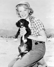 This is an image of Photograph & Poster of Anne Francis 102371