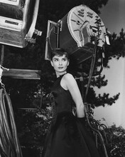 This is an image of Photograph & Poster of Audrey Hepburn 102736