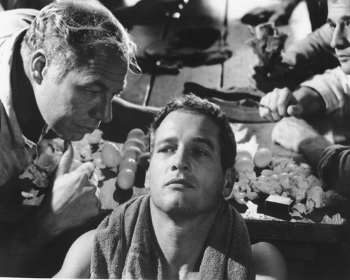 This is an image of Photograph & Poster of Cool Hand Luke 102763