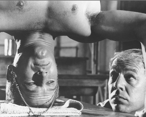This is an image of Photograph & Poster of Cool Hand Luke 102773