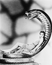 This is an image of 161089 Maria Montez Photograph & Poster