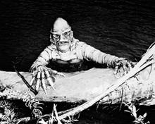 This is an image of 162057 The Creature from the Black Lagoon Photograph & Poster