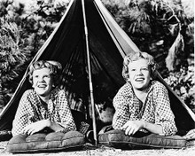 This is an image of 162291 Hayley Mills Photograph & Poster