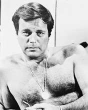 This is an image of 163088 Robert Wagner Photograph & Poster