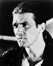 This is an image of 163106 Antonio Banderas Photograph & Poster