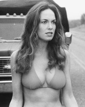 This is an image of 165381 Catherine Bach Photograph & Poster