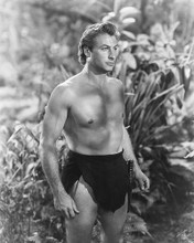 This is an image of 165684 Lex Barker Photograph & Poster