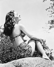 This is an image of 167186 Jeanne Crain Photograph & Poster