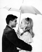 This is an image of 199151 The Umbrellas of Cherbourg Photograph & Poster