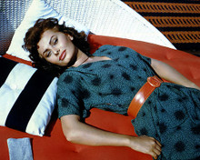 This is an image of 281015 Sophia Loren Photograph & Poster