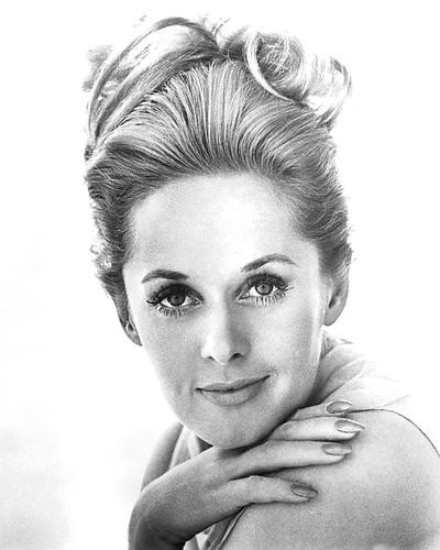 This is an image of 191185 Tippi Hedren Photograph & Poster