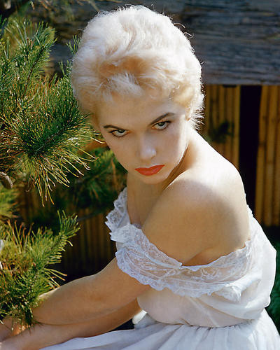This is an image of 281410 Stella Stevens Photograph & Poster
