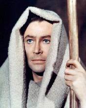 This is an image of 281572 Peter O'Toole Photograph & Poster