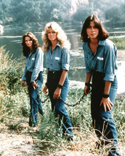 This is an image of 281610 Charlie's Angels Photograph & Poster