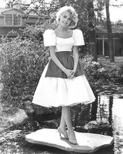 This is an image of 192017 Sandra Dee Photograph & Poster