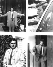 This is an image of 192026 Peter Falk Photograph & Poster