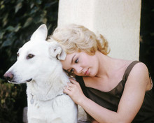 This is an image of 281927 Tuesday Weld Photograph & Poster