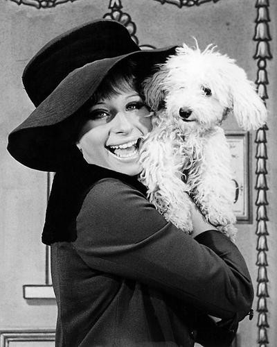 This is an image of 192230 Barbra Streisand Photograph & Poster
