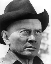 This is an image of 192233 Yul Brynner Photograph & Poster