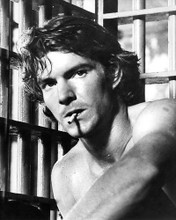 This is an image of 192354 Dennis Quaid Photograph & Poster